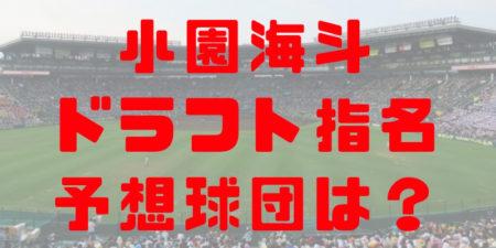 2018年ドラフト報徳学園 小園海斗の指名予想球団!成績・経歴・特徴は?