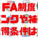 プロ野球 FA制度 FA権 ランク 取得条件 人的補償 金銭補償 内容
