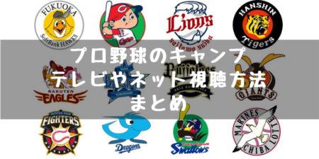 プロ野球 秋季 春季キャンプ 中継 テレビ ネット 見る方法 全球団まとめ