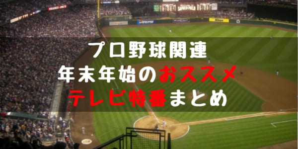 2018 2019 プロ野球 年末年始特番 テレビ番組 放送日程 まとめ 戦力外 とんねるず