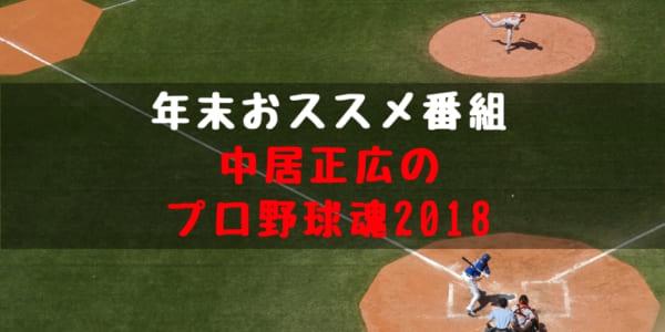 野球年末特番 中居正広のプロ野球魂 2018 概要 放送日程 放送内容