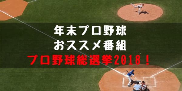 【野球年末特番】プロ野球総選挙 2018!概要や放送日程、過去のランキング結果は?