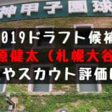 ドラフト2019候補 西原健太(札幌大谷)の成績・経歴・特徴は?