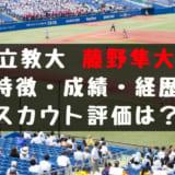 ドラフト2019候補 藤野隼大(立教)の成績・経歴・特徴は?