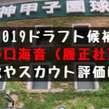 ドラフト2019候補 野口海音(履正社)の成績・経歴・特徴は?