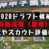 ドラフト2020候補 寺西成騎(星稜)の成績・経歴・特徴は?