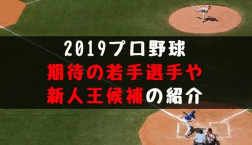 2019プロ野球ブレイク候補や新人王候補!若手有望株は誰だ!