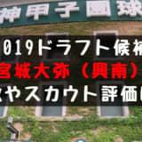 ドラフト2019候補 宮城大弥(興南)の成績・経歴・特徴は?