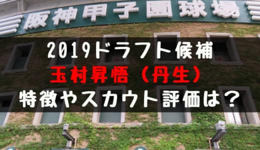 【ドラフト】玉村昇悟(丹生)の成績・経歴・特徴は?