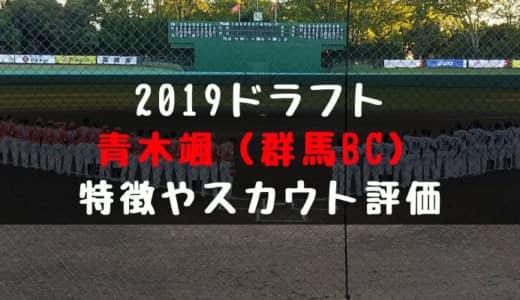 【ドラフト】青木颯(群馬ダイヤモンドペガサス)の成績・経歴・特徴は?