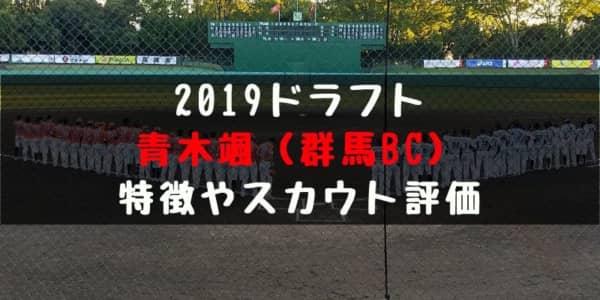 ドラフト2019候補 青木颯(群馬ダイヤモンドペガサス)の成績・経歴・特徴は?