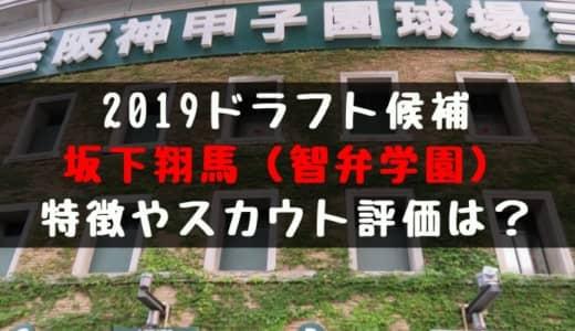 【ドラフト】坂下翔馬(智弁学園)の成績・経歴・特徴は?