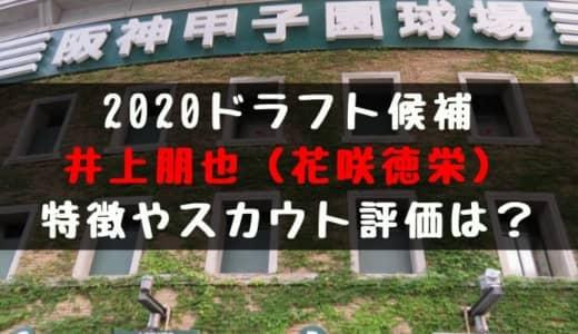 【ドラフト】井上朋也(花咲徳栄)の成績・経歴・特徴は?