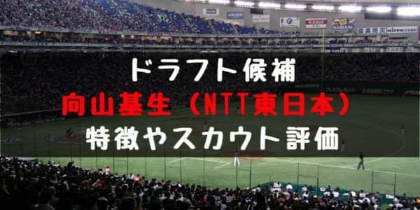 【ドラフト】向山基生(NTT東日本)の成績・経歴・特徴