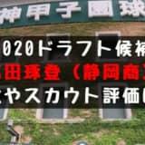 【ドラフト】高田琢登(静岡商)の成績・経歴・特徴