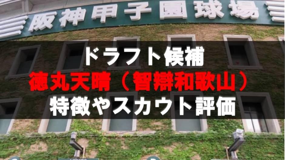 【ドラフト】徳丸天晴(智辯和歌山)の成績・経歴・特徴