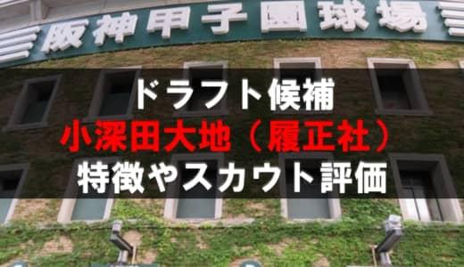 【ドラフト】小深田大地(履正社)の成績・経歴・特徴