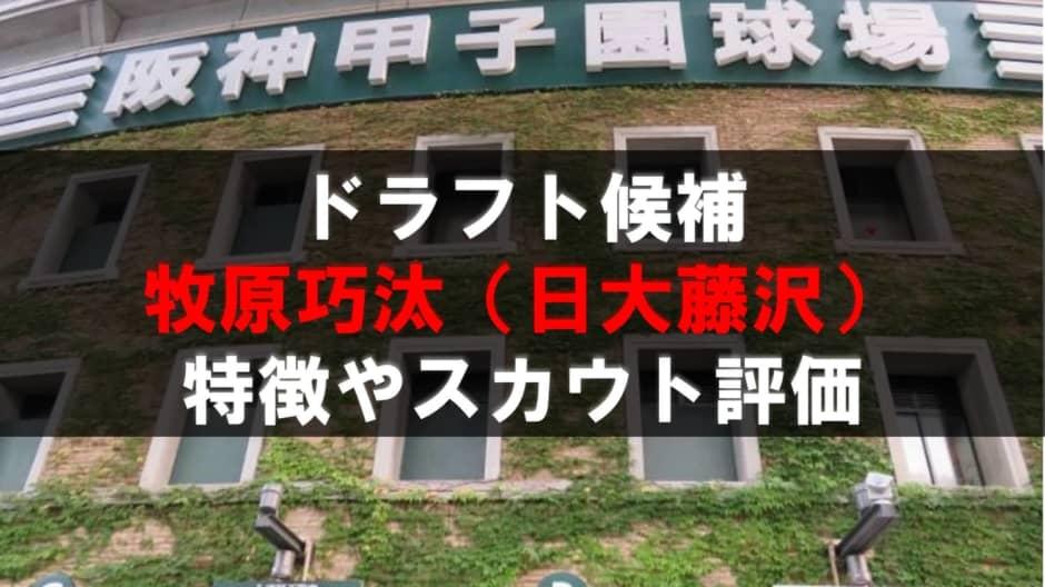 【ドラフト】牧原巧汰(日大藤沢)の成績・経歴・特徴