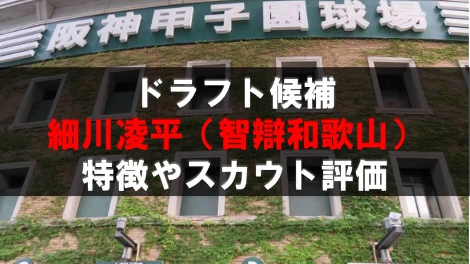 【ドラフト】細川凌平(智辯和歌山)の成績・経歴・特徴