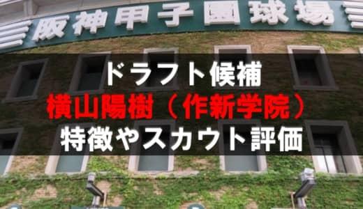 【ドラフト】横山陽樹(作新学院)の成績・経歴・特徴