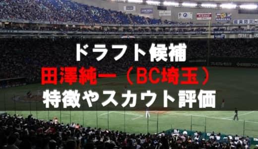 【ドラフト】田澤純一(BC埼玉)の成績・経歴・特徴
