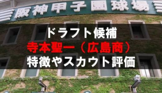【ドラフト】寺本聖一(広島商)の成績・経歴・特徴
