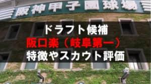 【ドラフト】阪口楽(岐阜第一)の成績・経歴・特徴