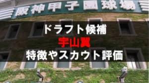 【ドラフト】宇山翼(日大三)の成績・経歴・特徴
