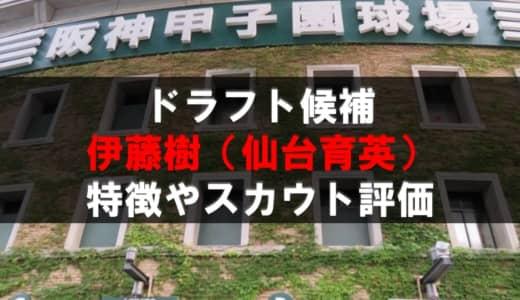 【ドラフト】伊藤樹(仙台育英)の成績・経歴・特徴