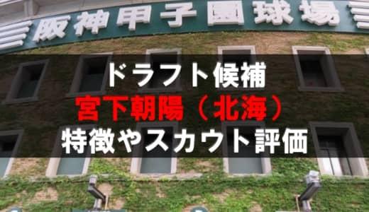 【ドラフト】宮下朝陽(北海)の成績・経歴・特徴