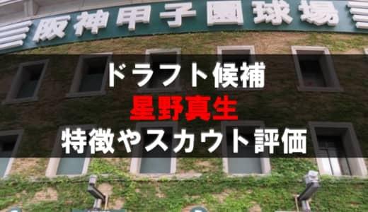 【ドラフト】星野真生(豊橋中央)の成績・経歴・特徴