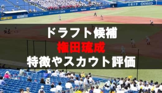 【ドラフト】権田琉成(明星大)の成績・経歴・特徴