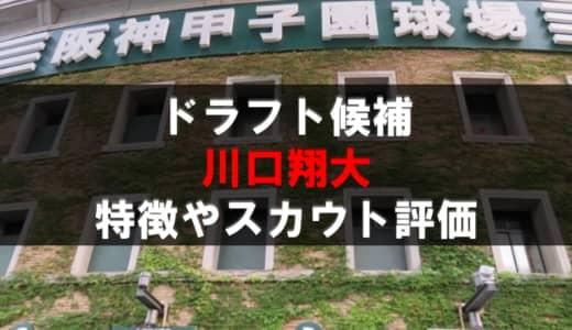 【ドラフト】川口翔大(聖カタリナ)の成績・経歴・特徴